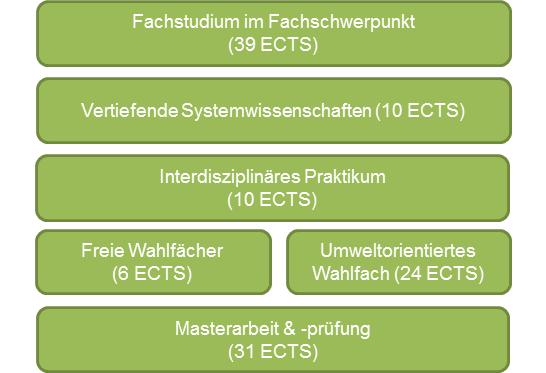 Struktur des Masterstudiums Umweltsystemwissenschaften mit Fachschwerpunkt Volkswirtschaftslehre